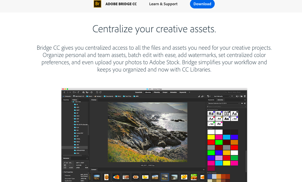 Looking for an Adobe Muse alternative? - Sitejet